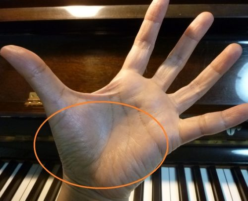 手の広がり(奏法のコツ) ぴぴピアノ教室