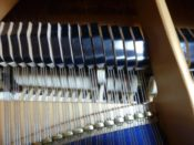 ピアノの中身 ぴぴピアノ教室