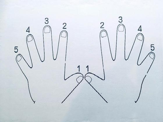 両手の指番号 ぴぴピアノ教室